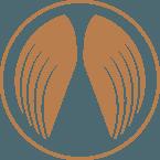 guardians-landing-hero-wingsicon-145x145